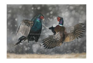 A Winter's Duel