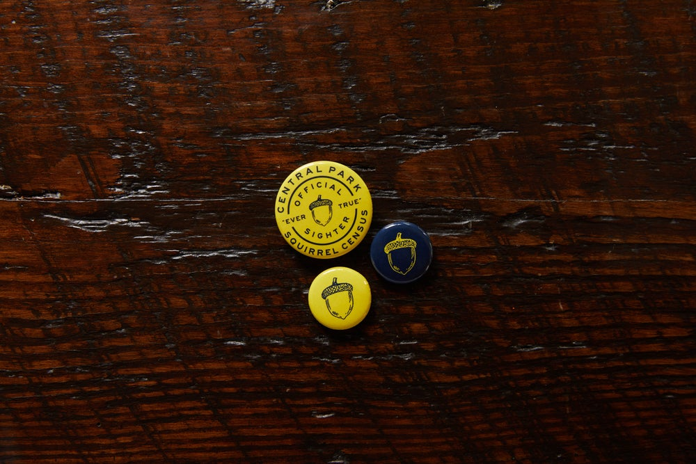 Image of 3-Pack of Official 'The Acorn' Buttons