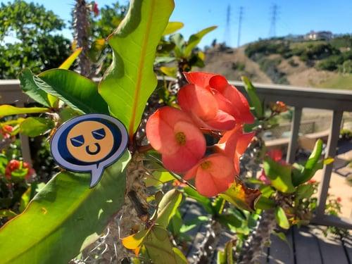 Image of Cool Guy Soft Enamel Pin