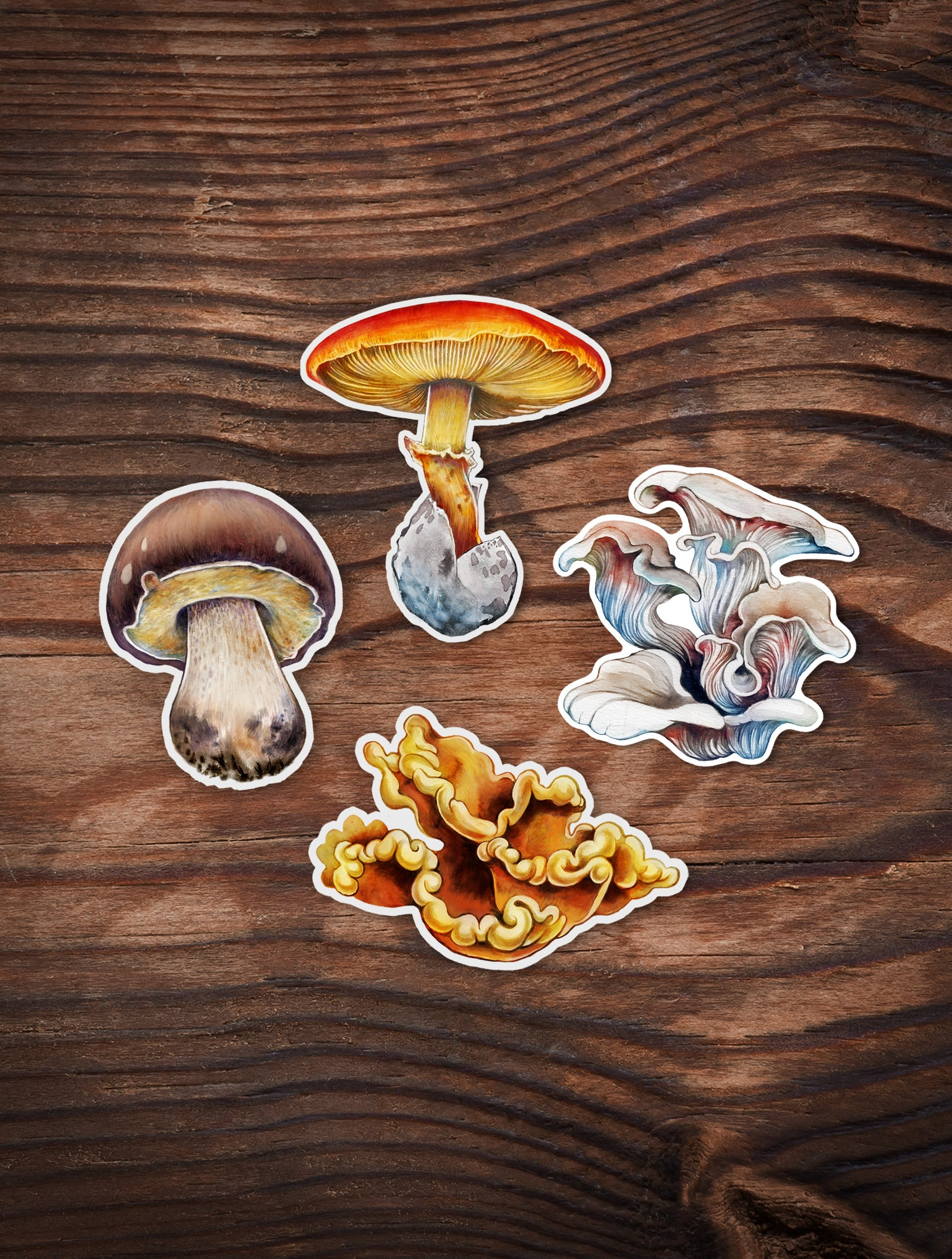 Image of Edible shroom sticker set 1