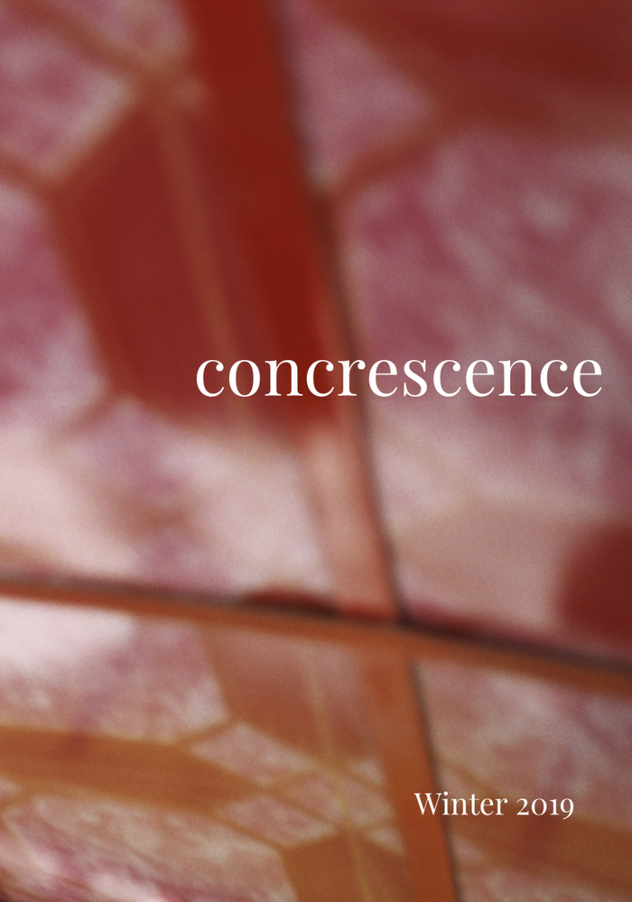Image of Concrescence Zine - Issue 2