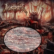 Image of INVIGORATE-SANCTITY THE LAST OF MISERY