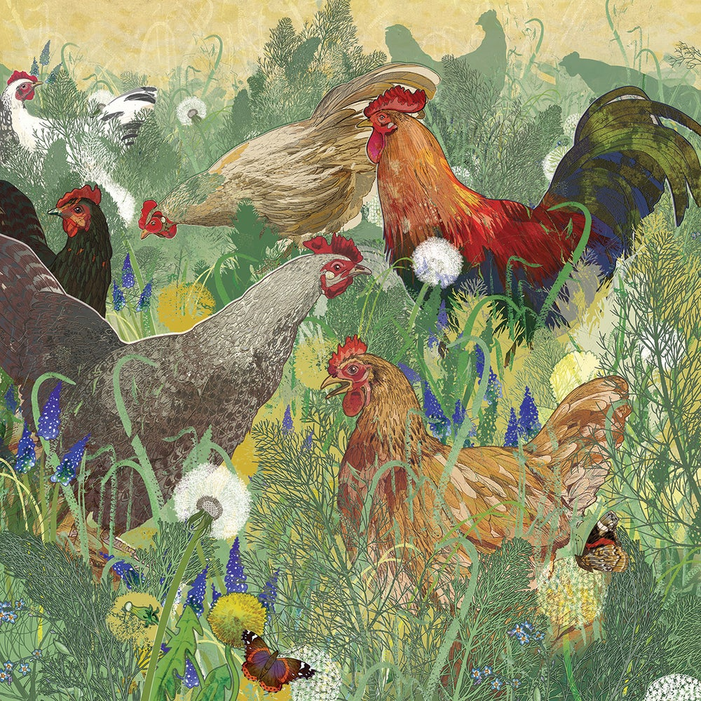 Image of Spring Chickens