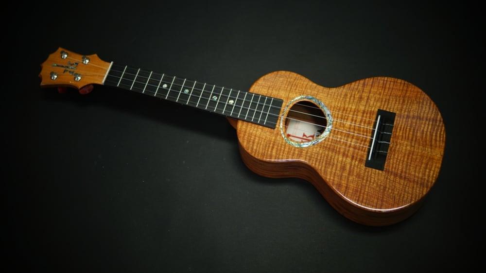 Image of KoAloha KCM-00 Custom Rosette Curly Koa & Mahogany Concert