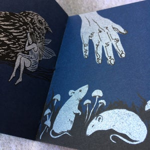 Image of Nocturne~ screenprinted book