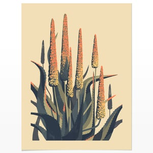 Image of Aloe Study 1