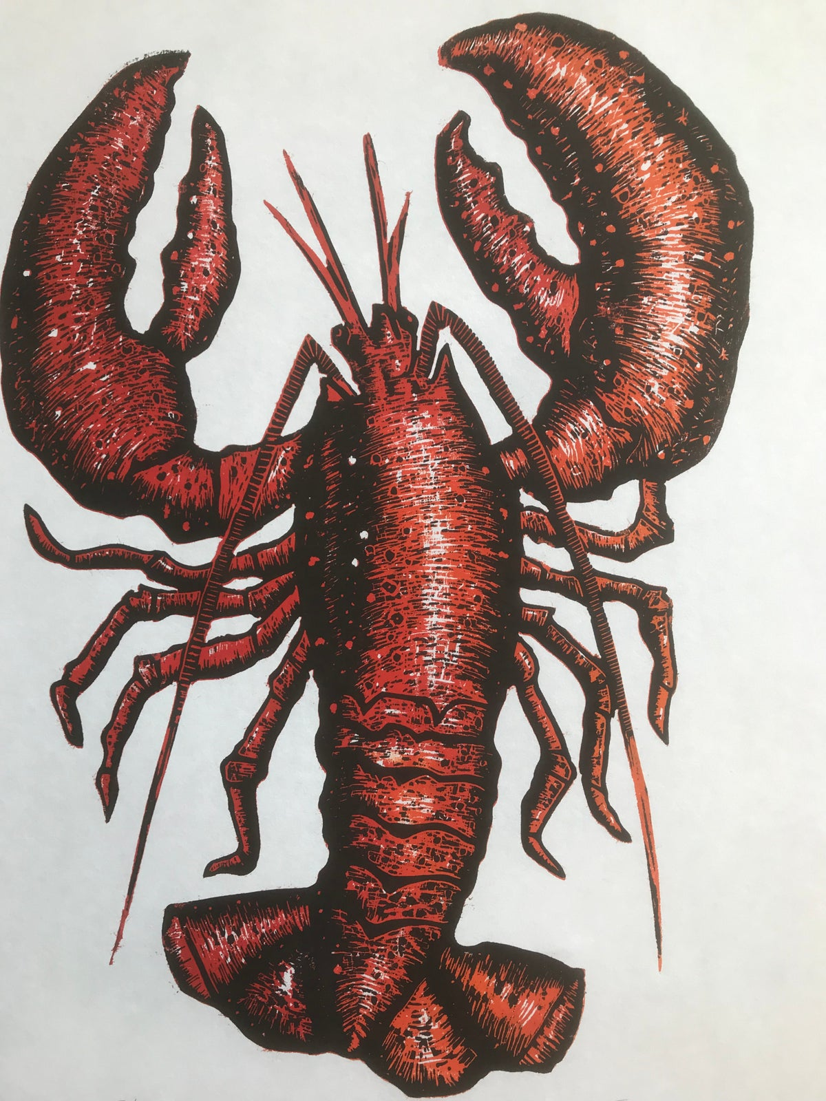 Image of Red Lobster