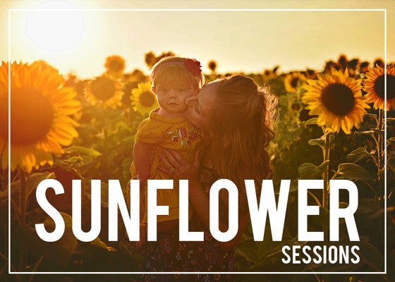 Image of SUNFLOWER MINI SESSIONS >> book + deposit