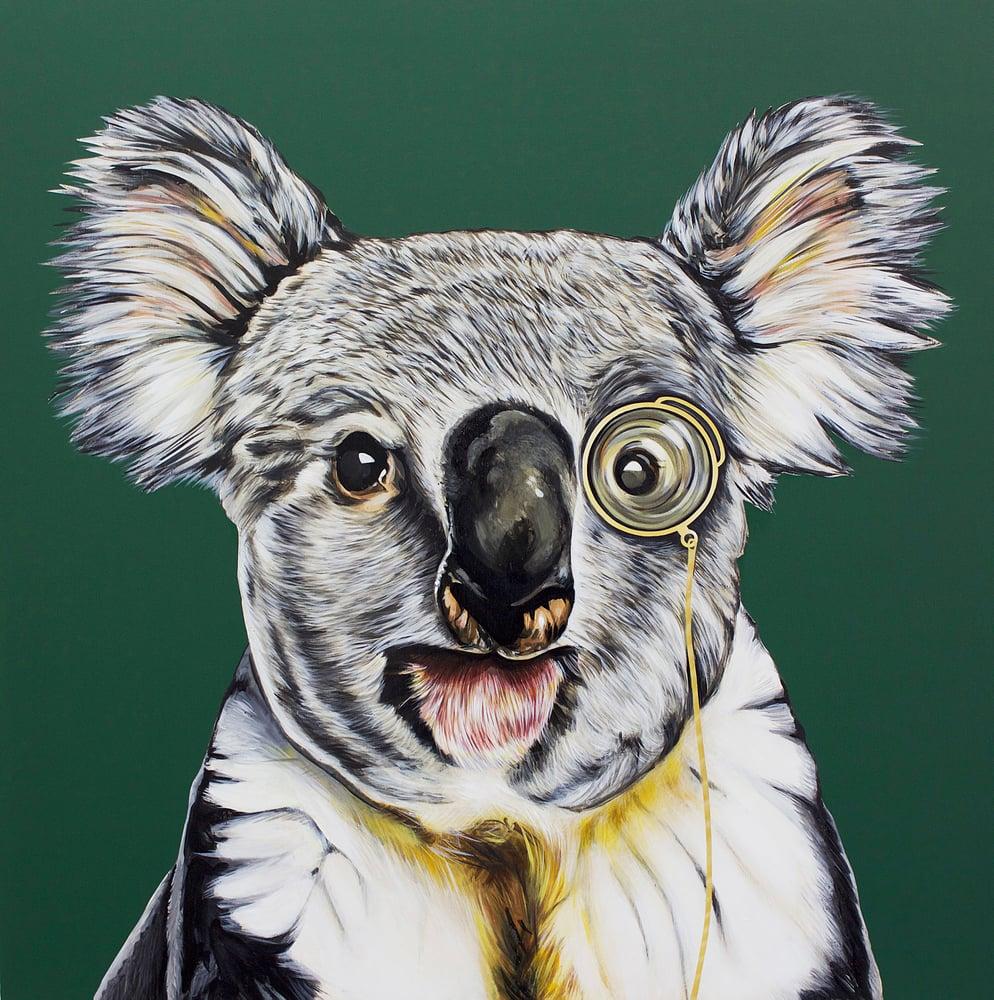 Image of Archie (Koala)