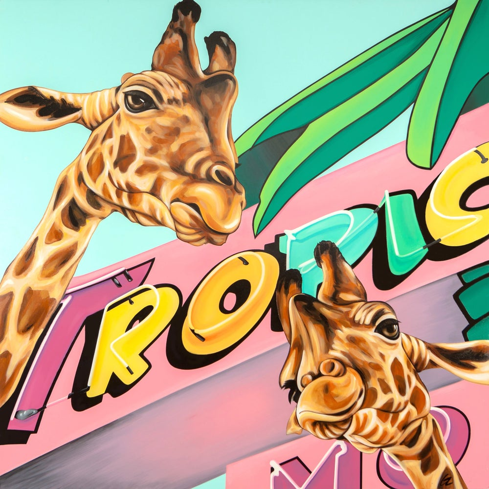 Image of TROPICANA (Giraffes)