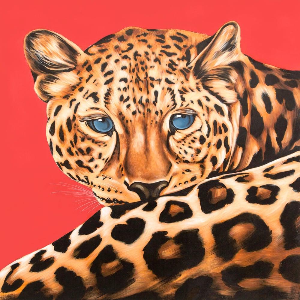 Image of Leo (Leopard)