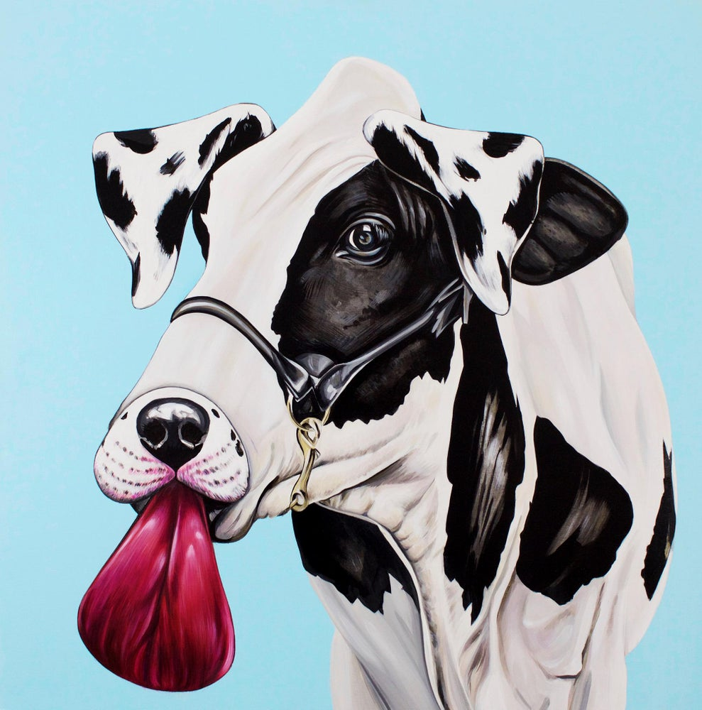 Image of Belle (Cow)