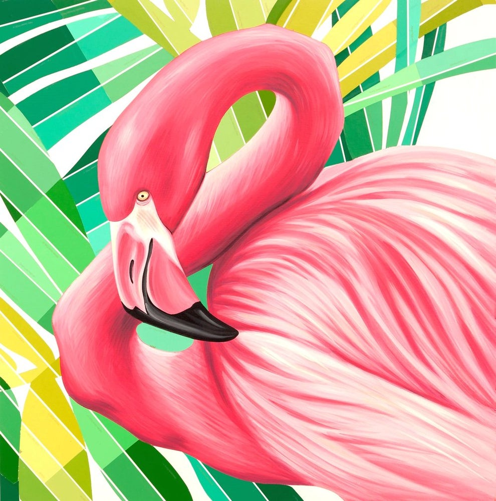 Image of Chip (Flamingo)