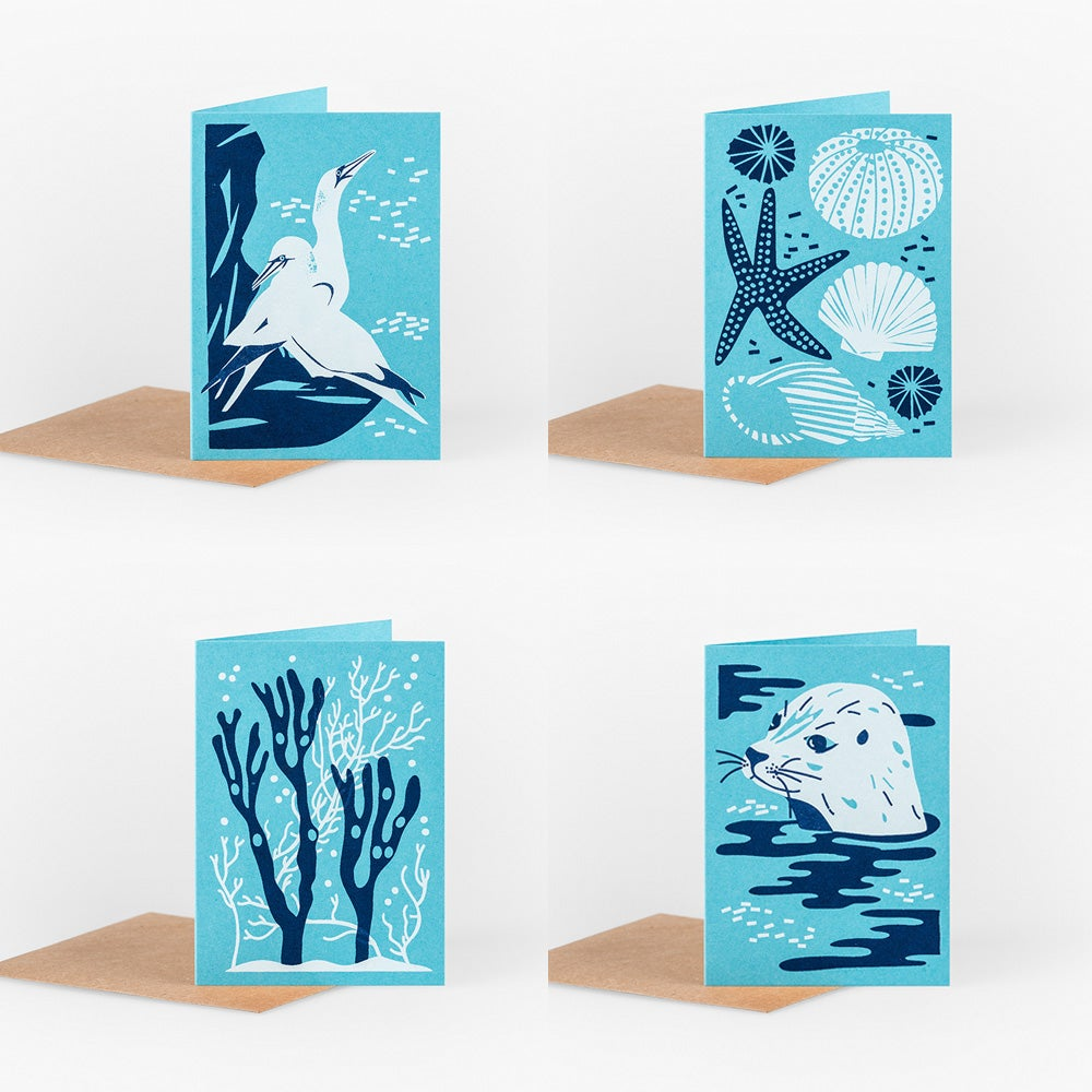 Image of Small Cards: Coast