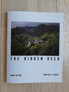 Image of The Hidden Deer