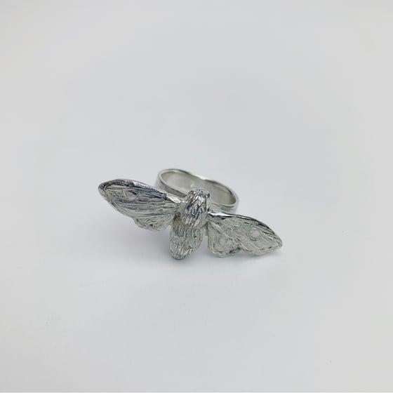 Image of Moth Ring