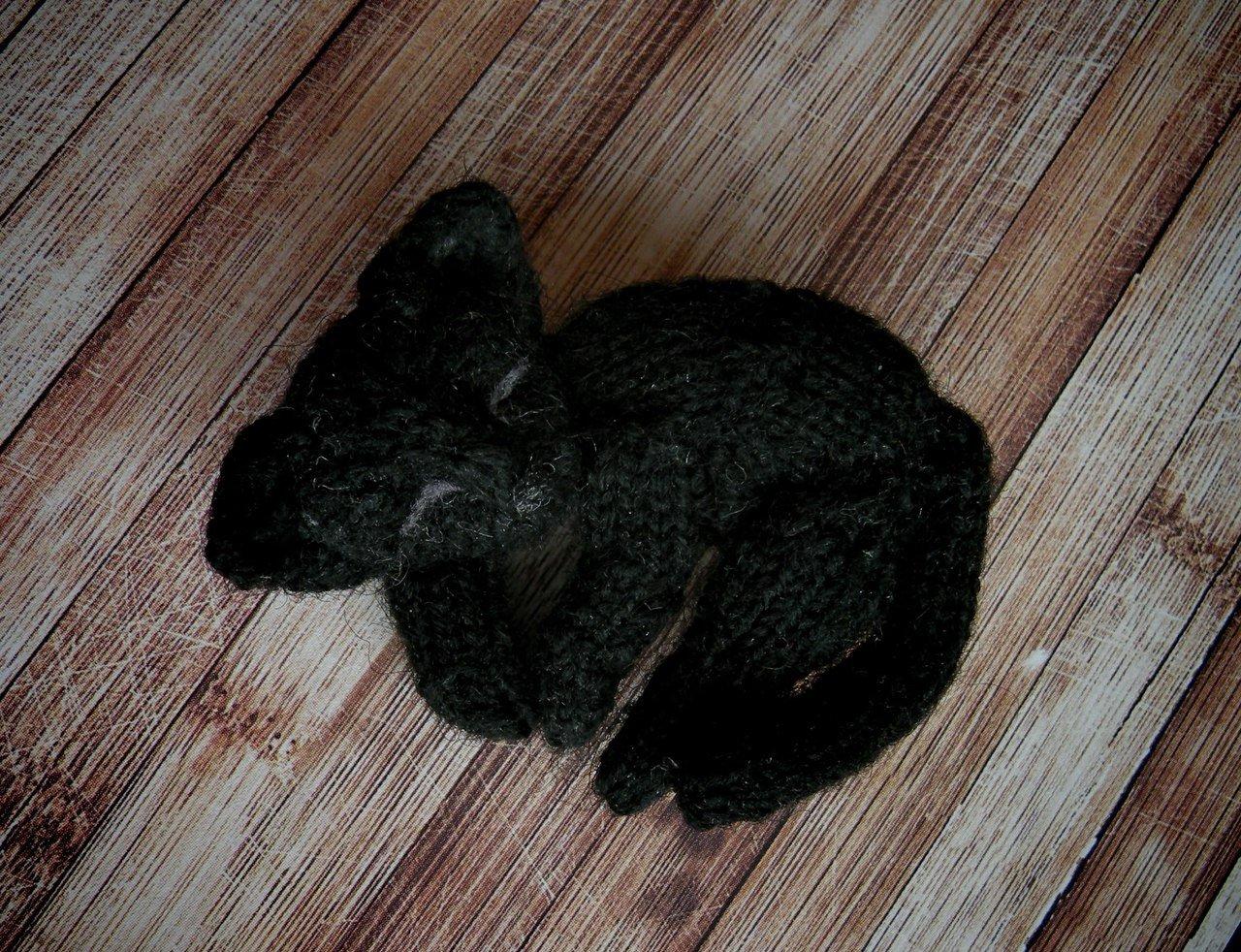 Image of Black cat brooch