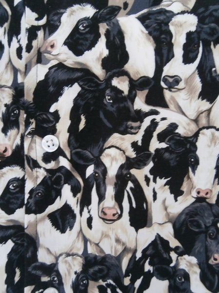 Image of COWS.