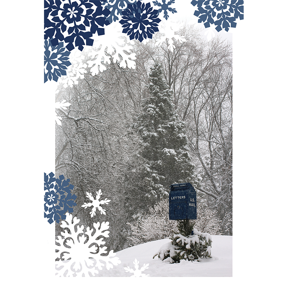 Image of Blizzard Box Postcard—Pack of 75