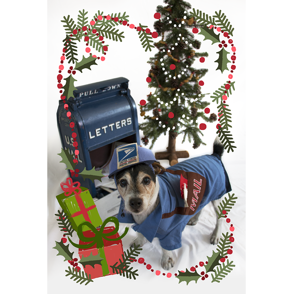 Image of Canine Christmas Postcard—Pack of 75