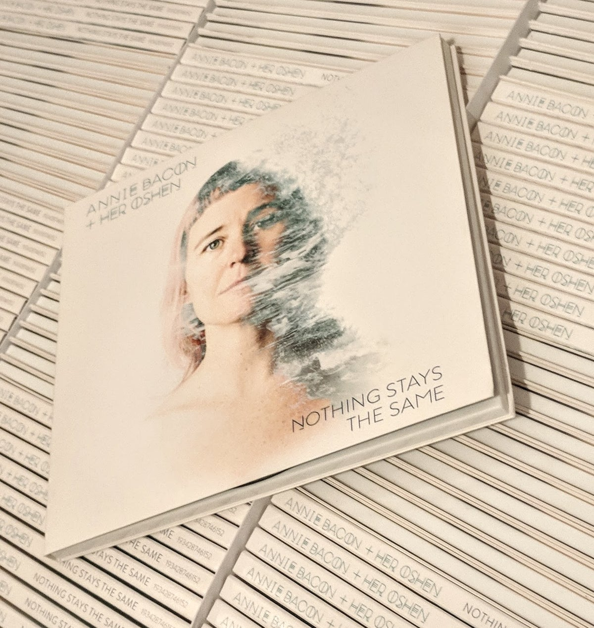 Image of Nothing Stays the Same CD
