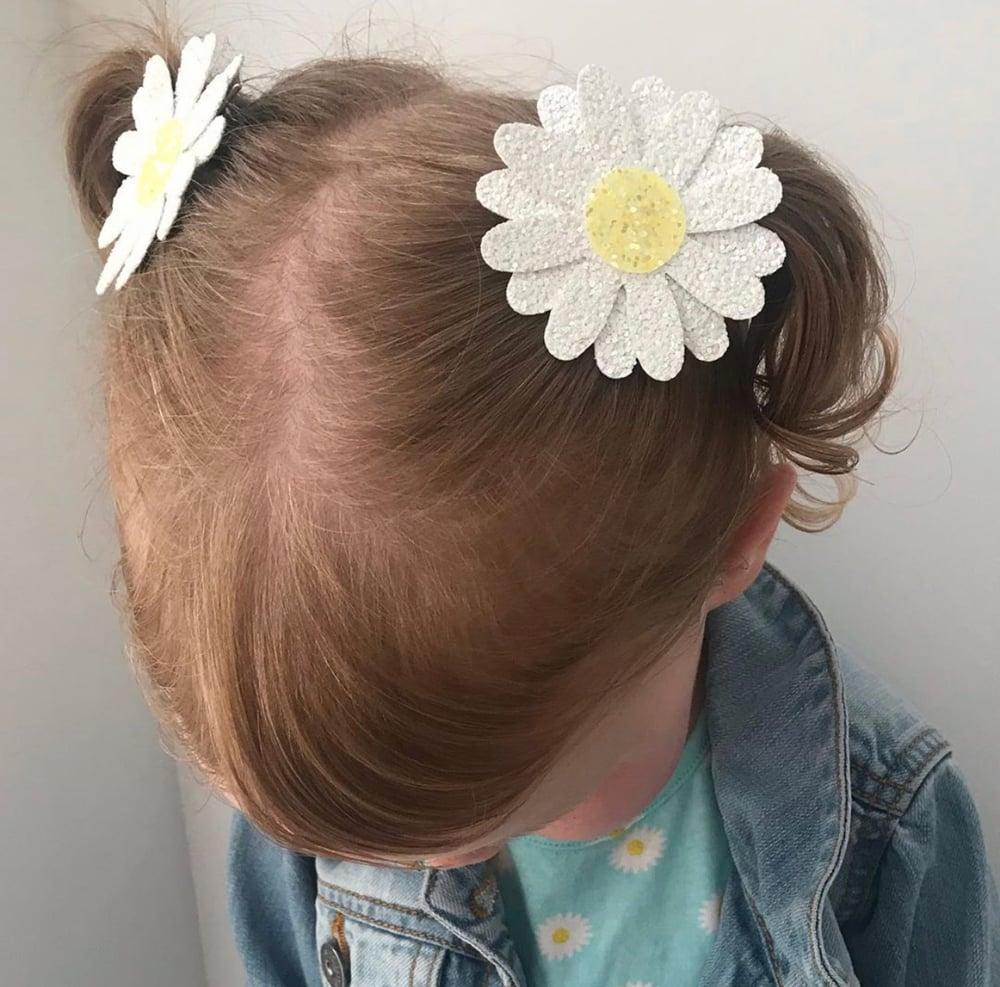 Image of Daisy clips