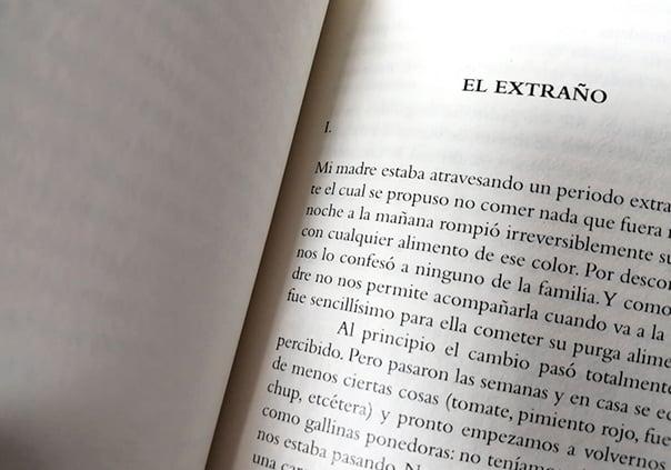 Image of Adiós, buen domingo / Daniel Treviño