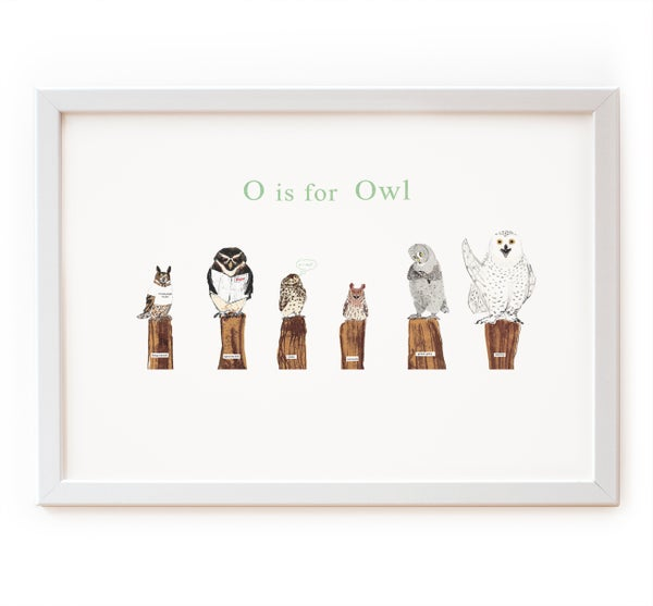 Image of O is for Owl Print