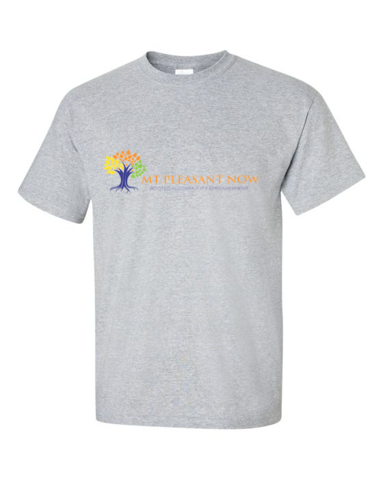 Image of Grey Classic Mt Pleasant T-Shirt