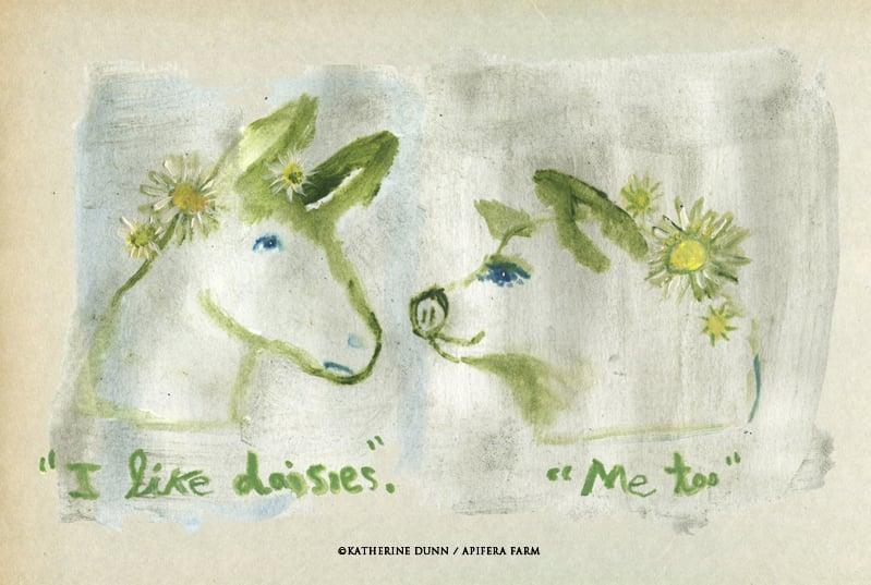 Image of I Like Daisies