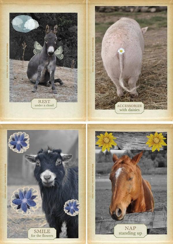 Image of Misfit Love Postcards