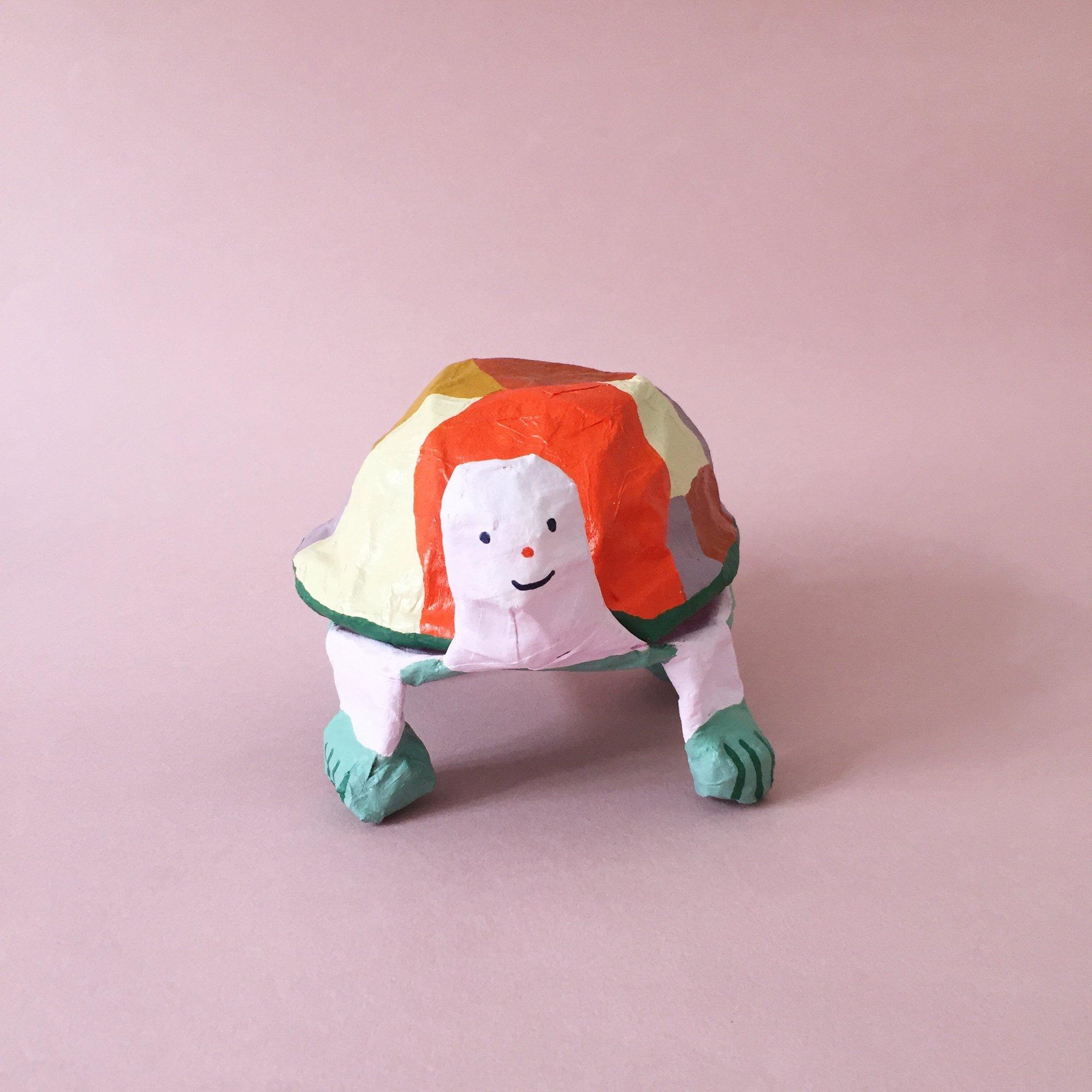 Image of Turtle box
