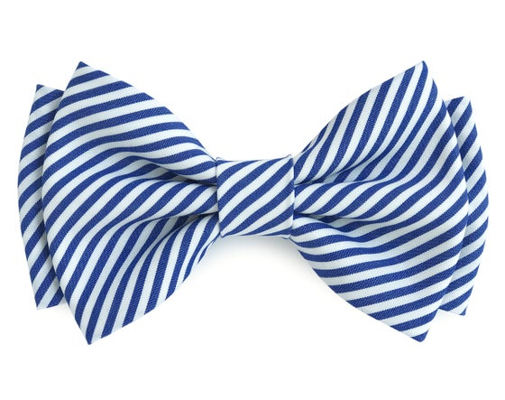 Image of White Navy Stripes pre-tied bow tie