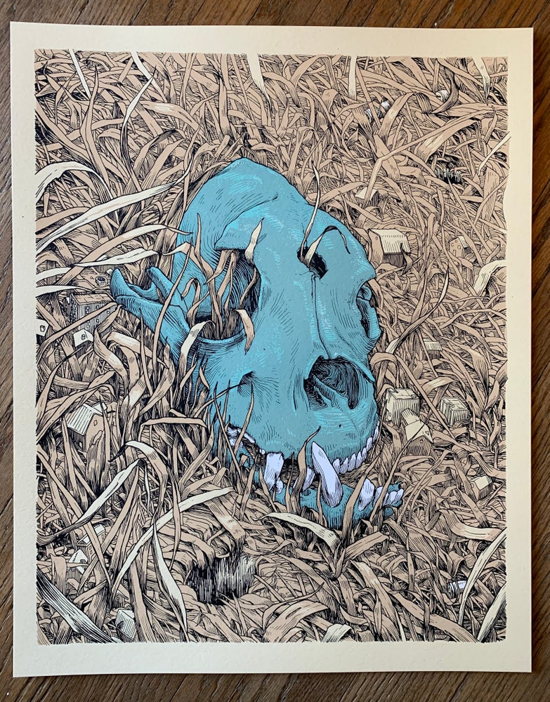 Image of Skull in the Grass - Art Print