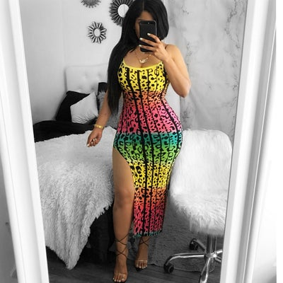 Image of Multi color leopard dress