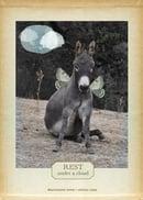Image of Donkey Wisdom Journals