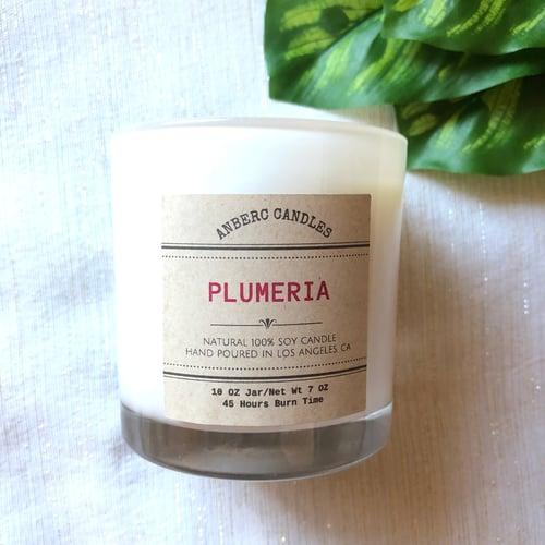 Image of PLUMERIA
