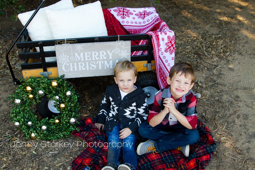 Image of CHRISTMAS MINI SESSIONS -Dec. 7th