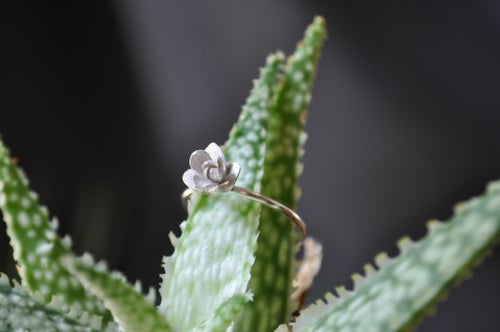 Image of One of a Kind Succulent Ring