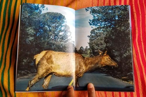 Image of Photobook + Print