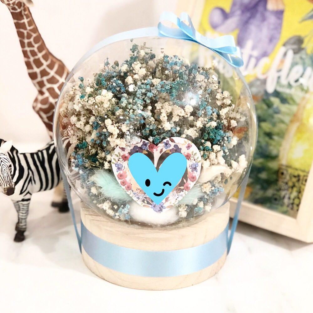 Image of Elsa in a Globe