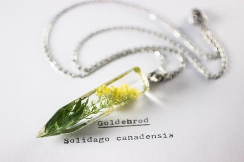 Image of Common Goldenrod (Solidago canadensis) - Medium Crystalline Pendant