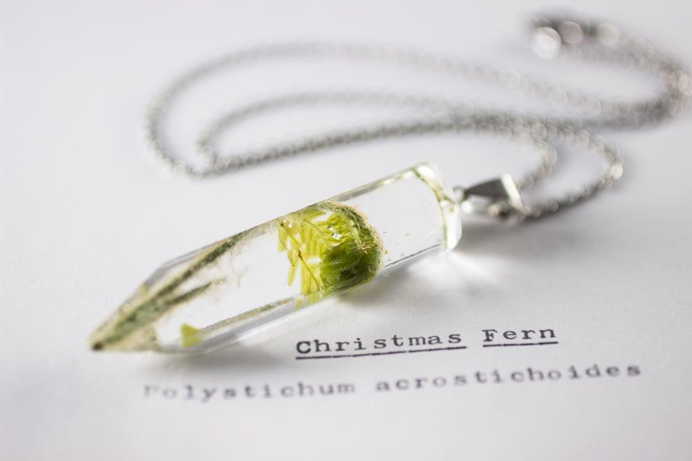 Image of Christmas Fern Fiddlehead (Polystichum acrostichoides) - Medium Crystalline Pendant #1