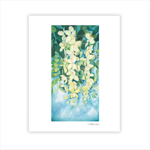 Image of Cassia Flowers Archival Paper Print