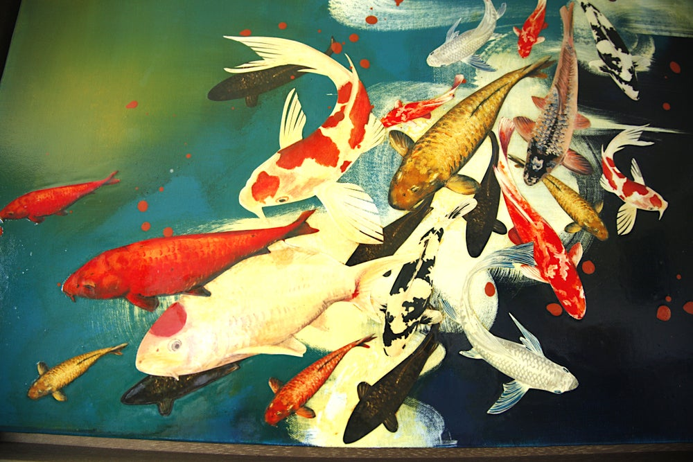 Image of Original Canvas - Koi on Prussian Blue/Turquoise/Ochre - 60cm x 60cm