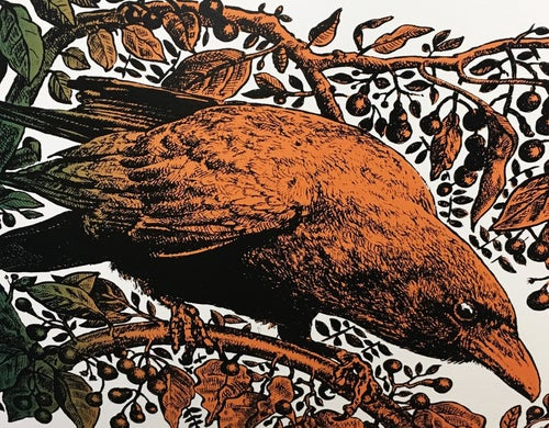 Image of THE RAVEN, THE BONES AND THE CAMPHOR TREE, Hugo Oliveira