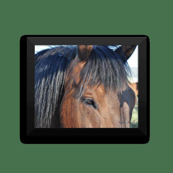 Image of Horses 5 Framed