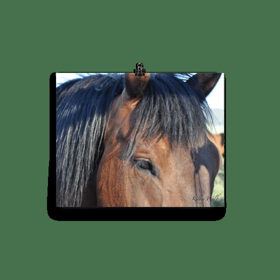Image of Horses 5
