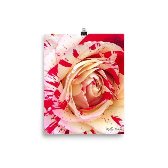 Image of Flower 20