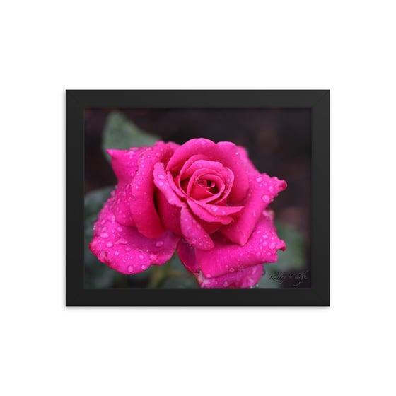 Image of Flower 18 Framed